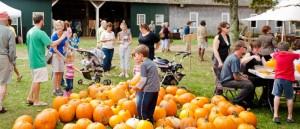 cropped-eli-dag_harvestfestival20111stuse_2011_00001-of-00014.jpg
